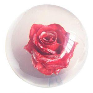 KXDLR Effacer Rose Rouge Boule De Bowling – Transparent 14Lbs